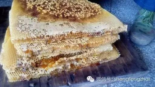 【咳嗽 蜂蜜】_准妈妈怀孕期喝蜂蜜 真的很有益!