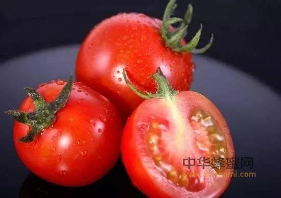 营养学家建议:凉拌西红柿用蜂蜜更健康!