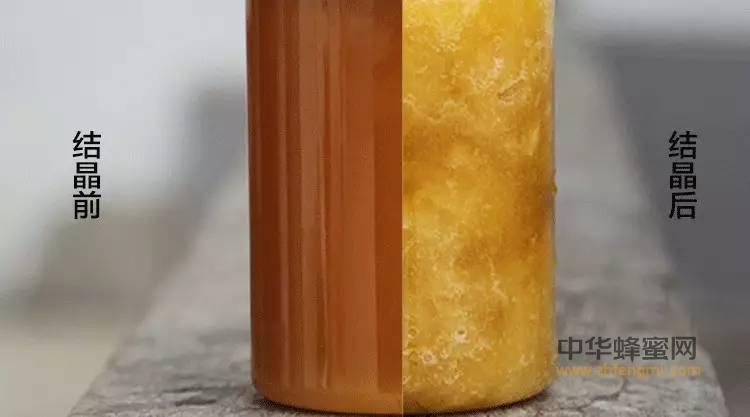 天然蜂蜜为啥会结晶?看完你就明白了