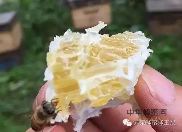 一张图带你辨清蜂蜜的12345