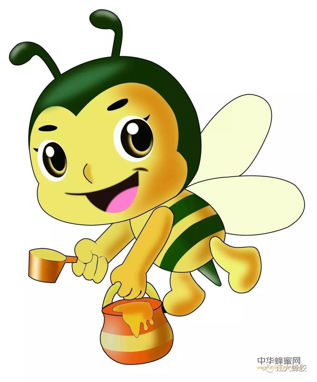 【蜂趣】蜜蜂——我们最好的朋友