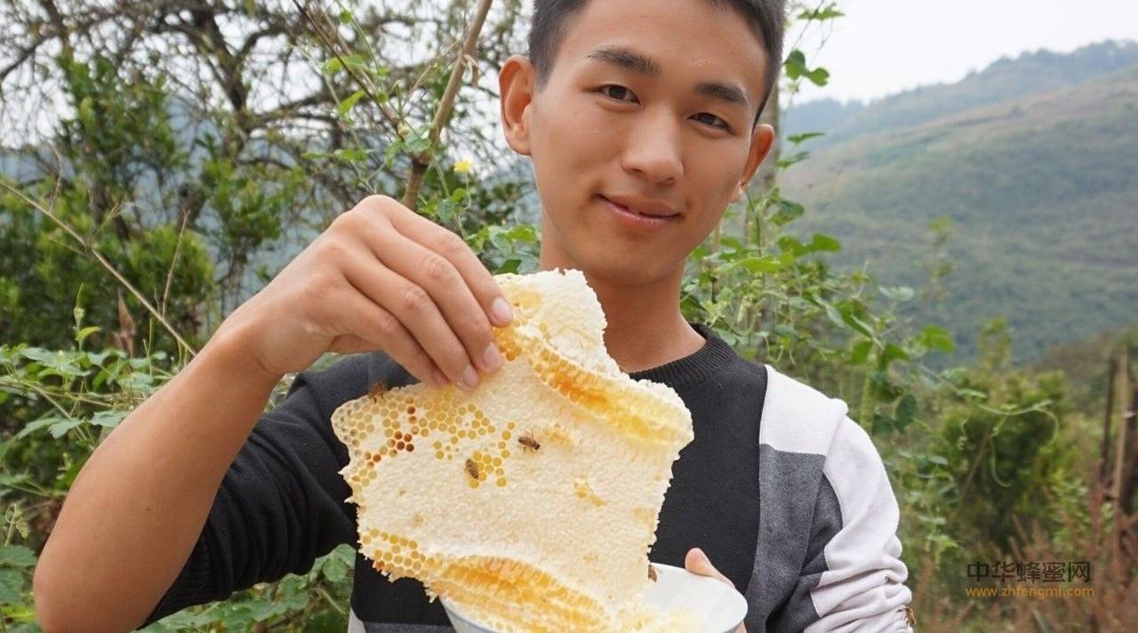 知蜂谷土家蜂蜜清火治牙痛