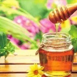 读完这篇,你会感觉蜂蜜都白吃了!