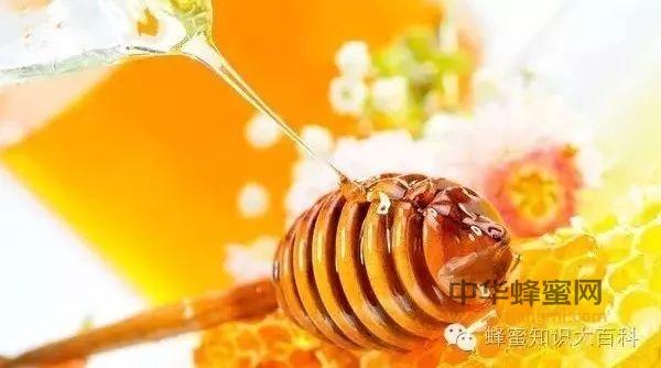 为什么说蜂蜜抗菌杀菌能力强?原因在这里!