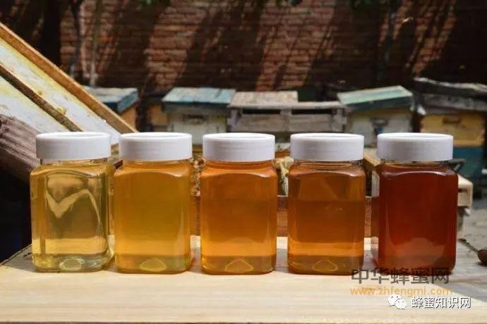 蜂蜜市场信誉危机分析,造假者仅排第五。第一竟是他!!!