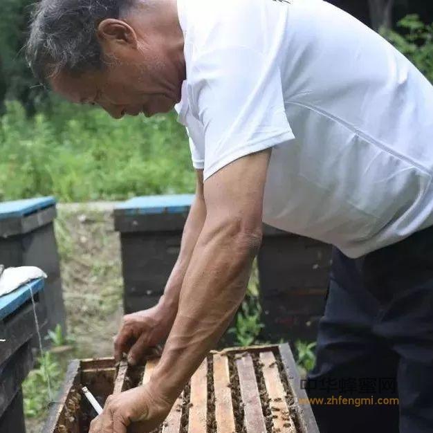 男人喝蜂蜜有什么好处,蜂蜜对于男人就是神存在!