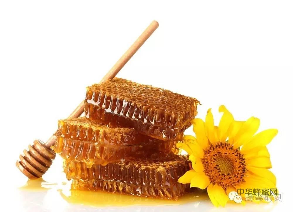 一段很有意思的蜂蜜视频,不过说的大多不对。