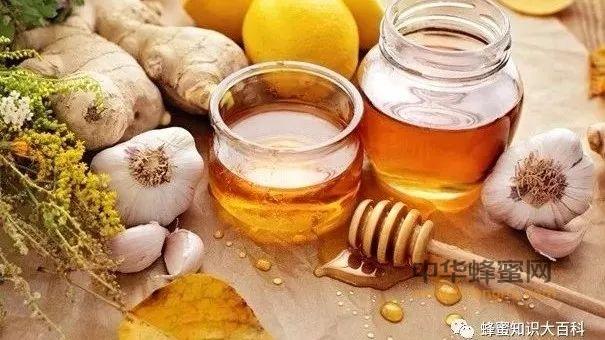 推荐几款蜂蜜的治病食疗方法,好吃方便又有效!