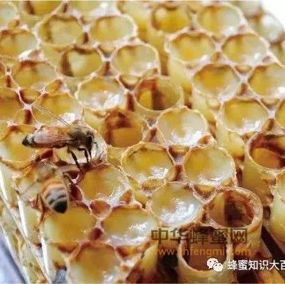 蜂王浆对哪些胃肠病有疗效?
