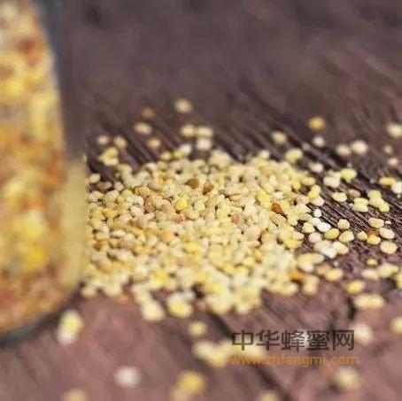 养肝护肝,蜂<a