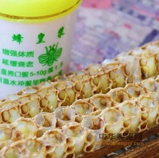 液体营养黄金——蜂王浆,你值得拥有!