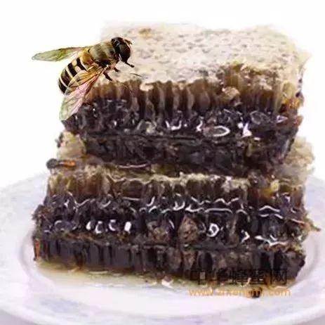 什么是老巢蜜