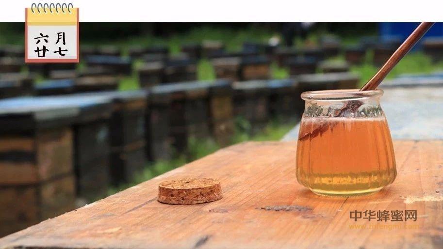对女性而言,蜂蜜是最好的礼物!