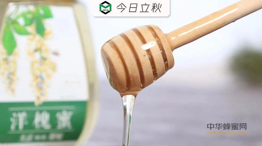秋季食用蜂蜜的好处,不仅仅是瘦身…
