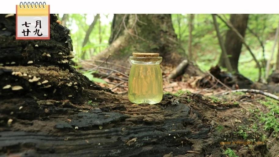 常食蜂蜜,可防心脑血管疾病!每天坚持,再也不得这些病了!