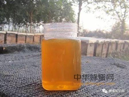蜂蜜表层有泡泡,是不是变质?