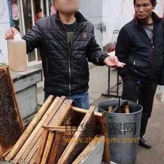 【蜂蜜食用】_拉着空蜂箱进城卖蜂蜜,小伙不让拍照说怕同行模仿