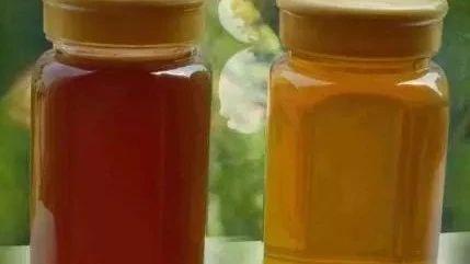 【skinfood蜂蜜眼霜】_挑选和鉴别真假蜂蜜的几种方法 绝对有用