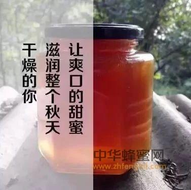 【同仁堂蜂蜜事件】_天冷家中备瓶蜂蜜 你全家都需要