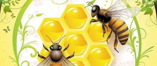 吃蜂胶有什么好处?