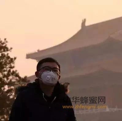 雾霾来袭——喝杯蜂蜜水压压惊,还可润肺