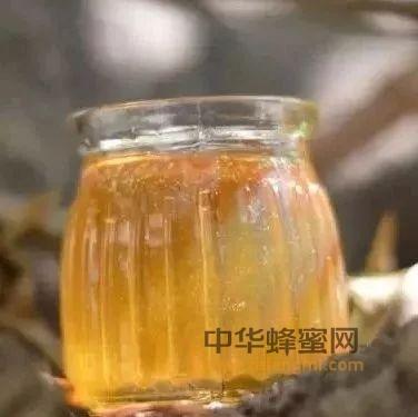 【蜜蜂 蜂蜜】_孕妇这样喝蜂蜜,宝宝更健康!