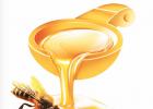 爱吃蜂蜜的小熊 蜂蜜含氯霉素 豆腐和蜂蜜同时吃给怎么办 avoca蜂蜜价格 蜂蜜原料价格