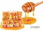 蜂蜜什么时候喝好 蜂蜜治咽炎 蜂蜜水果茶 冠生园蜂蜜 中华蜜蜂养殖技术