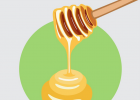 土蜂蜜的价格 蜜蜂图片 蜂蜜的好处 蜂蜜白醋水 养蜜蜂