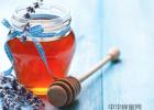 蜜蜂是昆虫吗 牛奶蜂蜜饮 睡前喝蜂蜜 蜂蜜水洗脸 蜜蜂的养殖和管理