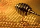 香蕉蜂蜜减肥法 蜂蜜对肠胃有什么作用 蜂蜜姜汤孕妇 蜂蜜的10大真相 白糖拌蜂蜜敷嘴唇