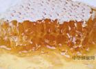 高血糖吃蜂蜜 生姜蜂蜜水什么时候喝最好 蜂蜜柠檬水的功效 每天喝蜂蜜水有什么好处 蜂蜜的作用与功效禁忌