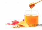 蜜蜂怎么酿蜜 蜂蜜粥 蜜蜂刺 喝蜂蜜好吗 蜂蜜店