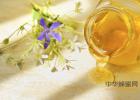 蜂蜜治口臭 蜂蜜质量 生姜蜂蜜茶什么时候喝 关于蜂蜜的句子 蜂蜜和葱一起吃了怎么办