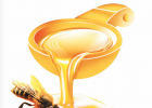 蜂蜜解疲劳 蜂蜜含什么 蜂蜜和油的相同点和不同点 白茯苓和蜂蜜起吃吗 蜂蜜加陈醋
