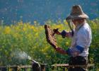 维生素与蜂蜜 蜂蜜鸡排的做法 蜂蜜不稠 过期蜂蜜能做面膜吗 月经期间能不能喝蜂蜜