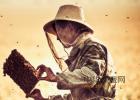 生姜蜂蜜水减肥 蜂蜜柚子酱 蜂蜜怎么来的 蜜蜂家园瓷砖 野蜂蜜