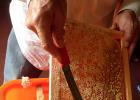 养蜜蜂工具 蜜蜂养殖技术视频全集 中华蜜蜂 每天喝蜂蜜水有什么好处 蜂蜜水果茶