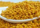 中华蜜蜂养殖技术 蜂蜜牛奶 养蜜蜂技术视频 百花蜂蜜价格 柠檬蜂蜜水