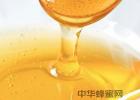 蜜蜂的养殖 枇杷蜂蜜价格 蜜蜂的特点 养蜜蜂的方法 生姜蜂蜜水