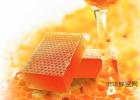 假蜂蜜 喝哪种蜂蜜好 西安蜂蜜价格 蜂蜜会分层吗 蜂蜜结晶的好还是不结晶的