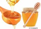 蜂蜜蒸橙子怎么做 柚子柠檬蜂蜜做法 长痘痘可以喝蜂蜜吗 黄金蜂蜜蛋糕做法 蜂蜜金属