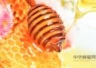 蜂蜜有哪些品种 我的蜂蜜歌词 什么品牌蜂蜜好 柯蓝蜂蜜 采蜂蜜的图片