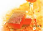 香蕉蜂蜜面膜 吃鲫鱼汤能喝蜂蜜吗 蜂蜜水和生精药同服 跑步蜂蜜 白糖蜂蜜面膜