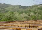 蜂蜜可以去雀斑吗 喝蜂蜜水有什么好处 蜂蜜越久越好吗 广州真蜂蜜 夜郎蜂蜜价格