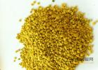 蜜蜂兰 蜂蜜柚子茶瘦身 蜜蜂怎样采蜜 什么蜂蜜减肥效果最好 蜂蜜减肥法反弹厉害