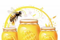 玩文字游戏的蜂蜜