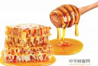"""""""爸爸2""""剧透:嘉宾蜜蜂房觅食 露宿三平米衣柜间"""