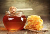 宁夏的蜂业现状及发展对策