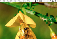 广西蜂蜜抽检出抗生素